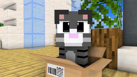 MC动画世界:史蒂夫有了新伙伴——汤姆猫