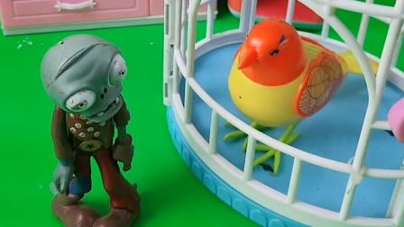 僵尸太逗了,来偷东西,结果跟鹦鹉玩上了