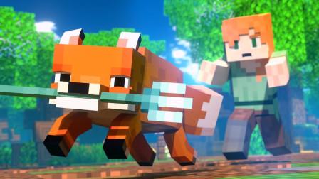 【我的世界动漫微电影】狐狸小偷 艾利克斯和史蒂夫的生活 FOX THIEF - Alex and Steve Life