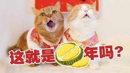 用超臭榴莲给5只猫做牛年年夜饭,猫:我不想吃#酷知