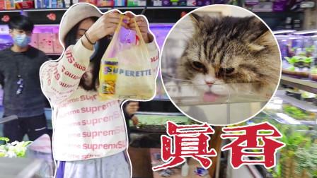 逛花市花180块买60条鱼回家,结果全家猫抢着喝鱼汤,拦都拦不住