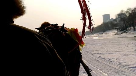 牛年春节江滨公园游玩马拉爬犁