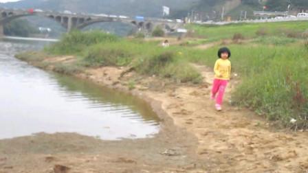 《南城花落》-王琪 伤感情歌 最新网络流行歌曲