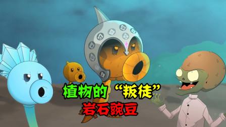 阿涵说:岩石豌豆竟沦为叛徒对植物同伴们疯狂攻击!这是咋回事呀