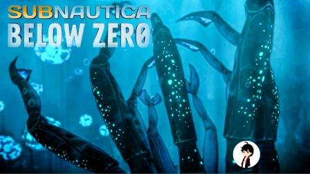 【矿蛙】深海迷航零度之下丨09 冰川解药