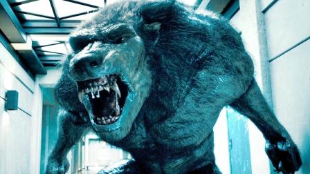 史上最强狼人诞生,体型巨大,还拥有超强自愈能力