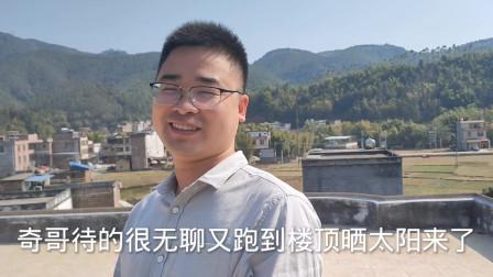 西安女婿广东过春节,感觉好漫长,无聊数牛,双手插裤兜就等开饭
