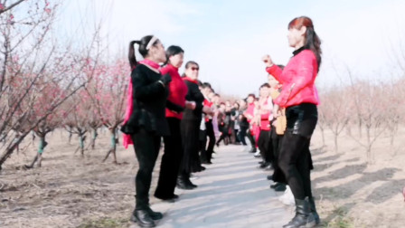 【淮北矿嫂广场舞】团队幽默舞剧《过河》不过我的河别想来梅园赏梅花