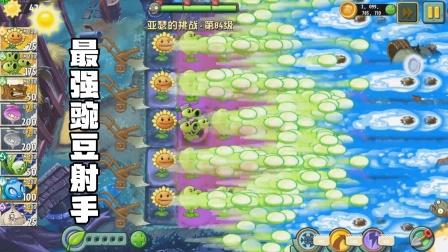 植物大战僵尸2:最强豌豆射手 机关枪扫射 僵尸太难了