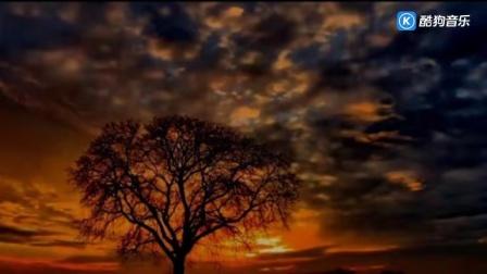 忆江南音乐—王琪新歌《可可托海的牧羊人》,凄婉的爱情故事,让人心酸落泪!
