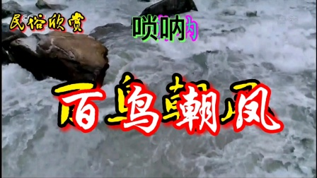 唢呐《百鸟朝凤》河南民族乐团🀄🎺牡丹花欣赏版