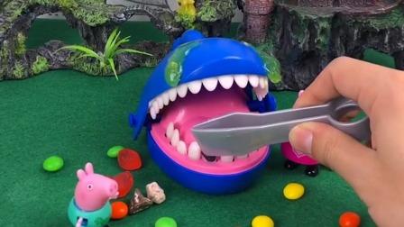 大鲨鱼痛哭流涕,佩奇乔治帮他把牙弄干净,大鲨鱼感激不尽