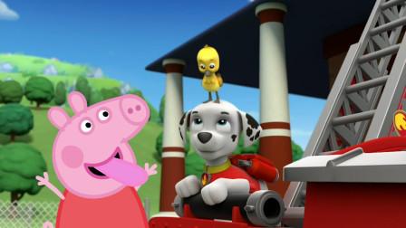 小猪佩奇和汪汪队立大功毛毛一起陪着小鸭子玩