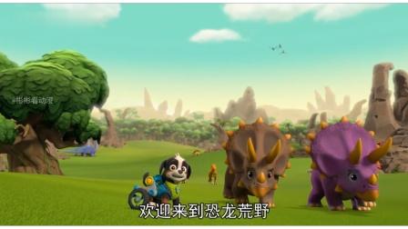 汪汪队:莱德带狗狗们去看各种恐龙,太酷了!