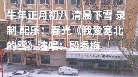 2021牛年正月初八清晨下大雪 拍摄 制作 配乐:春光《我爱你塞北的雪》演唱:殷秀梅