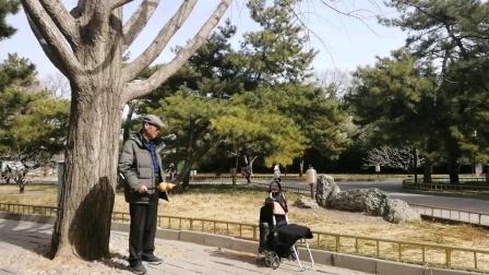 葫芦独奏(采茶舞曲)演奏沈维雨乐于颐和园2021年2月21日上午