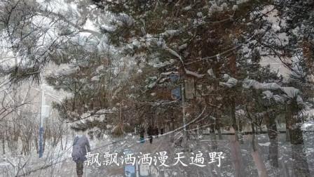 我爱家乡的雪.牛年春节期间拍摄