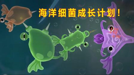 海洋细菌成长计划 我是一个小小的细胞 慢慢长成三个角的大细菌!熊不理猪解说