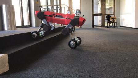 跑的最快的机器狗,装上轮子还能上楼梯,各种地形如履平地