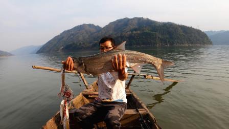 和朋友去江边野钓,用假饵擒获一条米级翘嘴,上鱼全程热血沸腾