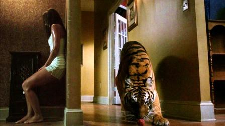 饿虎闯入家中,女孩被迫和老虎激战一夜
