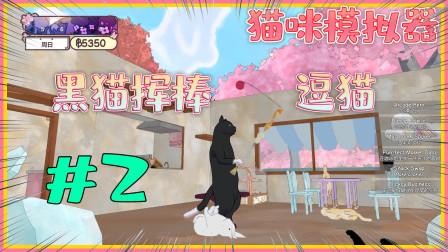 猫咪模拟器Calico:能把猫咪变成紫色的药水,唯独对黑猫不起作用