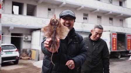 跟着青岛网红大叔来到中国最美渔村过年,不得不说长见识了!