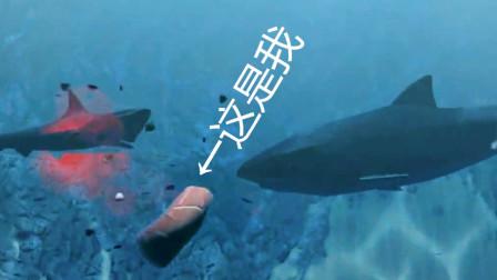 【裤衩解说】模拟鱼 小片鱼挣钱惨遭社会的毒打