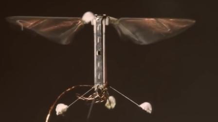 中国科学家发明磁性喷雾,对准物体一喷,即可制造微型机器人