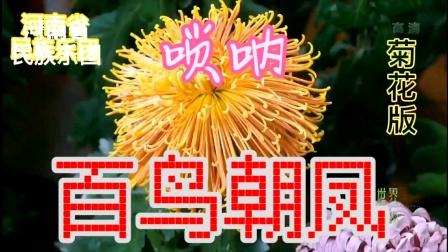 唢呐《百鸟朝凤》菊花版   ♬ 河南民族乐团原声㊣