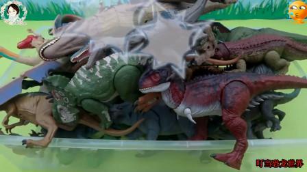 一箱的恐龙玩具,还有霸王龙三角龙和迅猛龙
