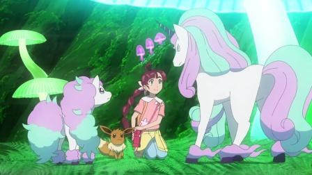 精灵宝可梦剑盾 第55集 小火马与烈焰马