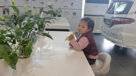 2岁萌宝在4S店吃水果,尽显吃货本质