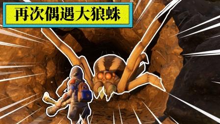 地面生存52:新发现的洞穴!里面有只凶猛的狼蛛!