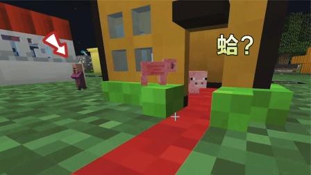 我的世界:猪抢了村民的家?