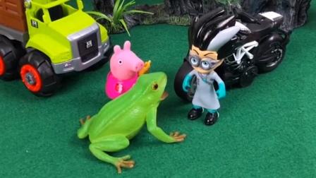 青蛙挡住了罗密欧的路,罗密欧怎么说都不听,佩奇一句话解决