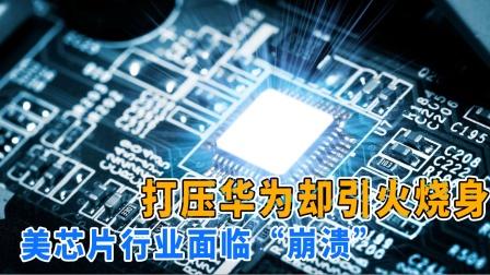 美终于尝到苦果,芯片行业损失上万亿,俄:中国策略见效了!