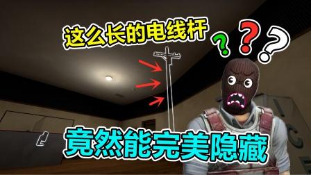 CSGO躲猫猫:违和感全无!电线杆也能完美隐藏?