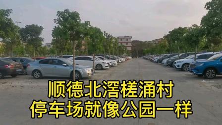 广东佛山顺德北滘槎涌村,停车场整的就像个公园,真不愧是土豪村