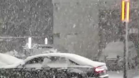 """河南多地突降春雪,郑州出现罕见""""雷打雪""""现象"""