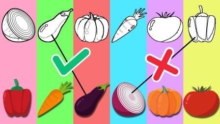 益智玩具动画,快来连连看分别都是哪些蔬菜?