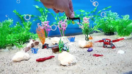 来看看游戏海底世界,有你喜欢的吗