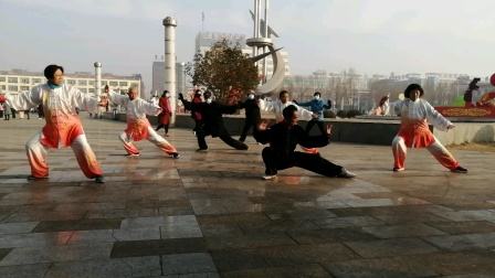 合练太极拳42式(牛年)初春 宋习