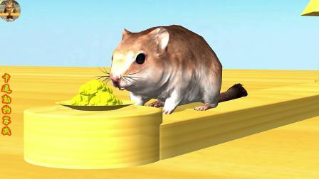 小老鼠偷吃了碗里的面包,不好猫咪来啦,赶紧跑回洞里吧!