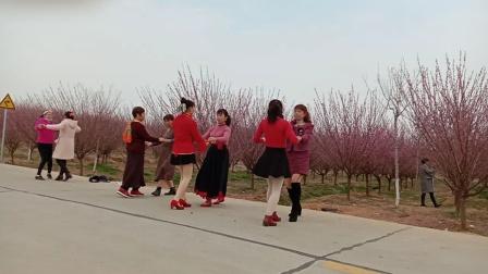 春暖花开,常梅花,开心姐妹舞起来《情歌轻轻唱》