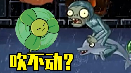 植物大战僵尸TAT版:三叶草能吹动海豚骑士吗?