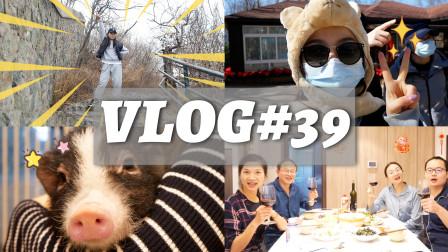 VLOG39:全家VR对战、爸爸凡尔赛教学、咸仔老年舞大秀?!