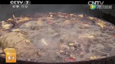 2013年12月20日CCTV-7(乡土)栏目报道杨氏沙园膏药剪辑完整版