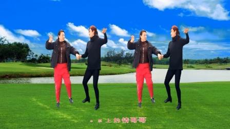 梦中的流星广场舞《草原情哥哥》双人对跳:玉香、海英