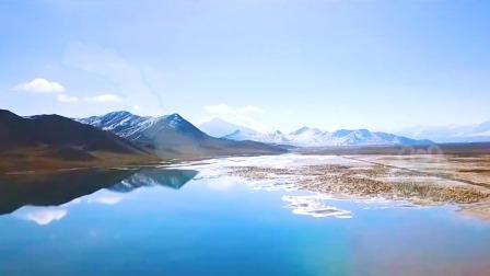 第9集 拯救藏羚羊——可可西里